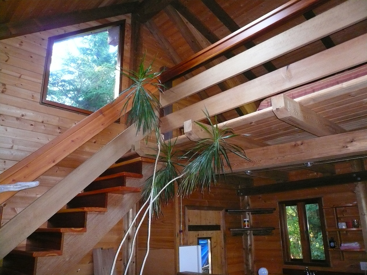 Cedar Nest Cabin At Emerald Forest Retreat Tofino Guest